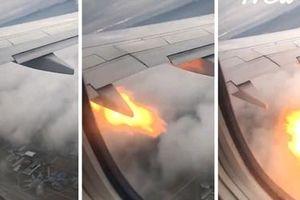 Thót tim cảnh động cơ bốc lửa sau khi máy bay đâm vào bầy ngỗng trời