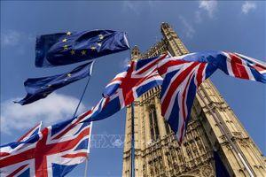 Thủ tướng Anh nhận được sự ủng hộ quan trọng của đảng Hợp nhất Dân chủ