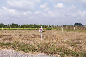 'Loạn' phân lô bán nền, Chủ tịch Bình Phước yêu cầu tạm dừng tách thửa đất nông nghiệp