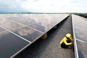 Quyết đấu thầu cạnh tranh, Campuchia chọn được giá 3,877 UScents/kWh cho Dự án điện mặt trời