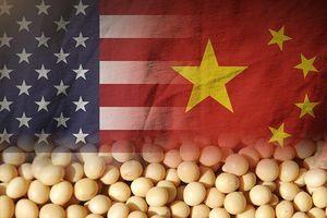 Trung Quốc ngưng tăng thuế lên thịt lợn, đậu tương Mỹ