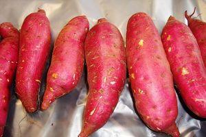 2 bộ bàn cách xuất khẩu khoai lang, chanh leo, dừa... sang Trung Quốc