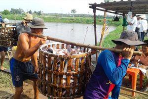Ùn, ứ, ế, nông, thủy sản xuất sang Trung Quốc: Năm sai lầm lớn