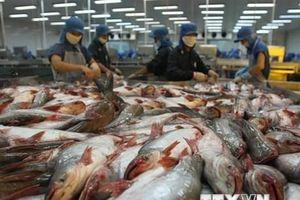 Tăng cạnh tranh cho thủy sản Việt Nam: Giải bài toán nguyên liệu