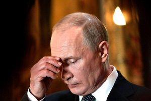 Không chỉ là nhà lãnh đạo tài ba, Tổng thống Putin còn có phong cách 'kỳ lạ' nhưng đáng ngưỡng mộ