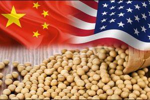 Trung Quốc 'xuống thang' chưa từng có, dỡ thuế quan với thịt lợn và đậu tương Mỹ