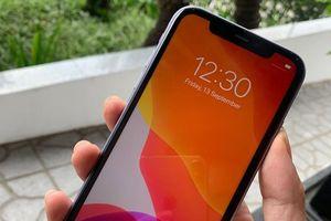 Dù chưa mở bán, bộ 3 iPhone mới đã có mặt tại Việt Nam
