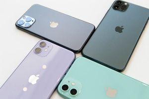 iPhone 11 màu nào được 'săn lùng' nhiều nhất?