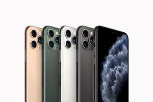 Apple hy sinh độ mỏng để bù đắp cho dung lượng pin trên iPhone 11