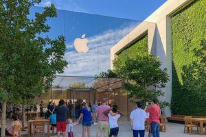 Bên trong Apple Store có mảng xanh độc đáo