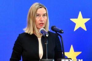 EU cảnh báo sự bất ổn sau vụ tấn công nhà máy lọc dầu Saudi Arabia