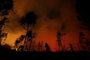 Cháy rừng hoành hành, Singapore ô nhiễm không khí nghiêm trọng