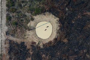 Tổng thống Brazil không phải người duy nhất gây ra vụ cháy rừng Amazon