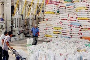 Chính phủ Thái Lan triển khai chương trình đảm bảo giá gạo từ tháng 10