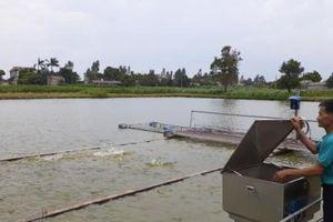 Bắc Ninh: Phát triển ngành thủy sản theo hướng hiện đại, bền vững