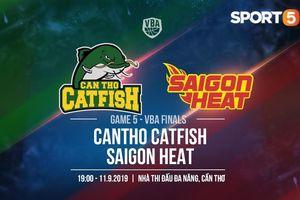 Saigon Heat và Cantho Catfish có gì trước trận đấu quan trọng nhất mùa giải?