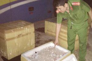 Xe khách chở 1 tấn 'tiểu hổ' bốc mùi từ Nam ra Bắc tiêu thụ