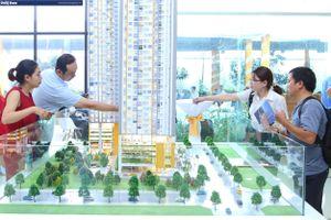 TP. HCM: Đề xuất đình chỉ 12 tháng đối với chủ đầu tư không công khai tình trạng pháp lý bất động sản
