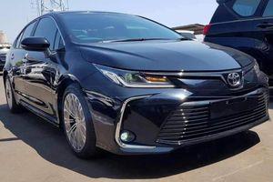 Rộ tin đồn Toyota Corolla Altis 2020 sắp ra mắt Việt Nam