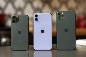 Báo quốc tế đánh giá iPhone 11 Pro Max - camera, pin đáng tiền nhất