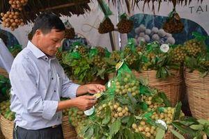 Để tăng được kim ngạch xuất khẩu nông sản vào thị trường Trung Quốc