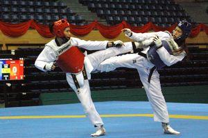 Gần 300 võ sĩ dự tranh giải vô địch taekwondo năm 2019