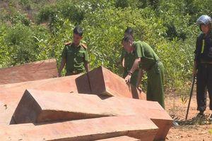 Vụ phá rừng quy mô lớn ở Đắk Lắk: Phát hiện thêm trên 500m3 gỗ