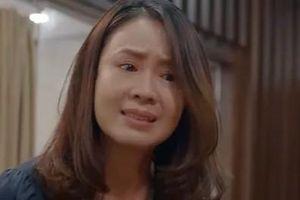 Hoa hồng trên ngực trái tập 13: Vừa nhắc đến ly hôn, Thái bị Khuê chửi thẳng mặt