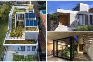 Căn nhà 3 tầng tràn ngập cây xanh càng ngắm càng thích mắt