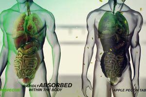 Giải độc kim loại nặng trong cơ thể bằng thực phẩm