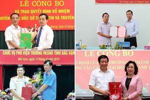 Điều động, bổ nhiệm nhân sự mới tại Hà Nội và 5 tỉnh