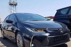 Toyota Corolla Altis thế hệ mới chưa có kế hoạch về Việt Nam