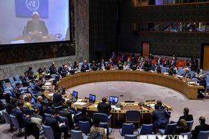 Nhiều nước ủy viên HĐBA Liên hợp quốc kêu gọi ngừng bắn tại Syria