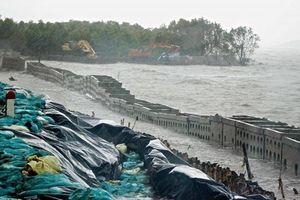 Cà Mau ban bố tình huống 'khẩn cấp' sạt lở bờ biển Đông