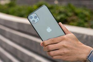 iPhone 11 loạn nhưng không bị hét giá trong ngày đầu về Việt Nam