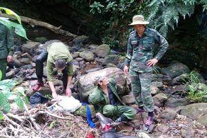 Bắt giữ đối tượng giết thịt Sơn Dương quý hiếm