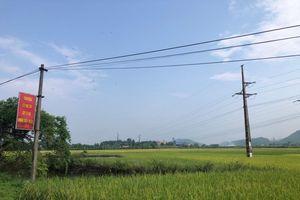 Thái Nguyên: Kiểm soát ô nhiễm môi trường trong sản xuất nông nghiệp