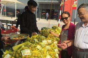 Tuần lễ giới thiệu nông sản sạch tỉnh Bắc Kạn tại Hà Nội