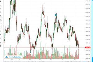 Điều gì đang xảy ra với cổ phiếu LHG?
