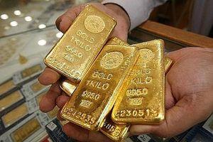 Giá vàng tiếp tục tăng, vượt xa mốc 42 triệu đồng/lượng