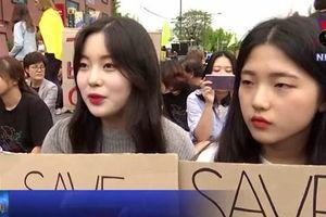 Hàng nghìn người Hàn Quốc 'giả chết' kêu gọi bảo vệ môi trường