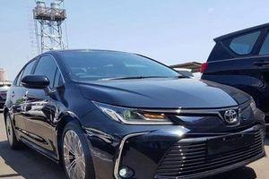 Toyota Việt Nam bác tin đồn Corolla Altis 2020 sắp về nước