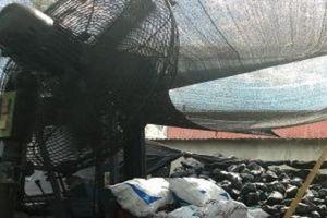 Nam phạm nhân tử vong tại xưởng đá do bị cánh quạt tự chế 'chém' nhiều nhát vào người