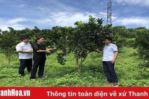 Đảng bộ huyện Lang Chánh nâng cao năng lực lãnh đạo, sức chiến đấu của tổ chức cơ sở đảng