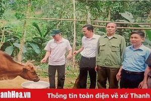 Hội Nạn nhân chất độc da cam/dioxin huyện Thường Xuân: Nhiều việc làm thiết thực giúp hội viên vượt khó