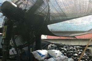 Bị cánh quạt tự chế 'chém' nhiều nhát, một phạm nhân thiệt mạng tại xưởng đá