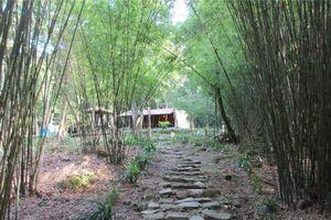 Giáo hội Phật giáo Việt Nam xác minh việc nhà sư ở Vĩnh Phúc bị tố 'gạ tình' phóng viên