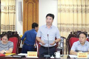 Thái Bình: Cty Phương Anh, Phú Hưng-Lam Sơn, Phát Triển Đô Thị và Xây Dựng 379...sai phạm nghiêm trọng
