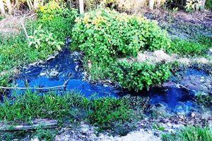 Bị phạt 260 triệu đồng, nhà máy tinh bột vẫn xả thải ra môi trường