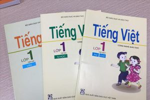 Trung tâm Công nghệ giáo dục kiến nghị Thủ tướng về việc bộ sách giáo khoa Tiếng Việt bị loại